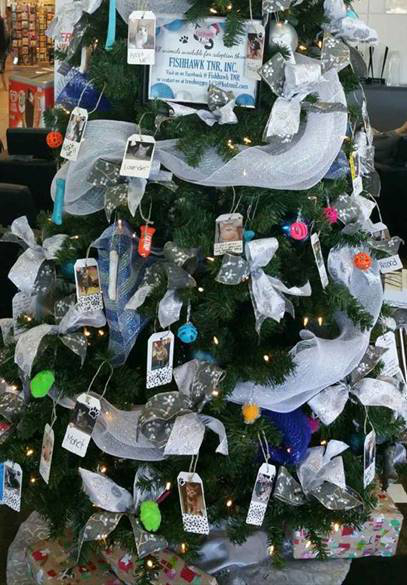 Pet Adoption Tree at Brandon Honda