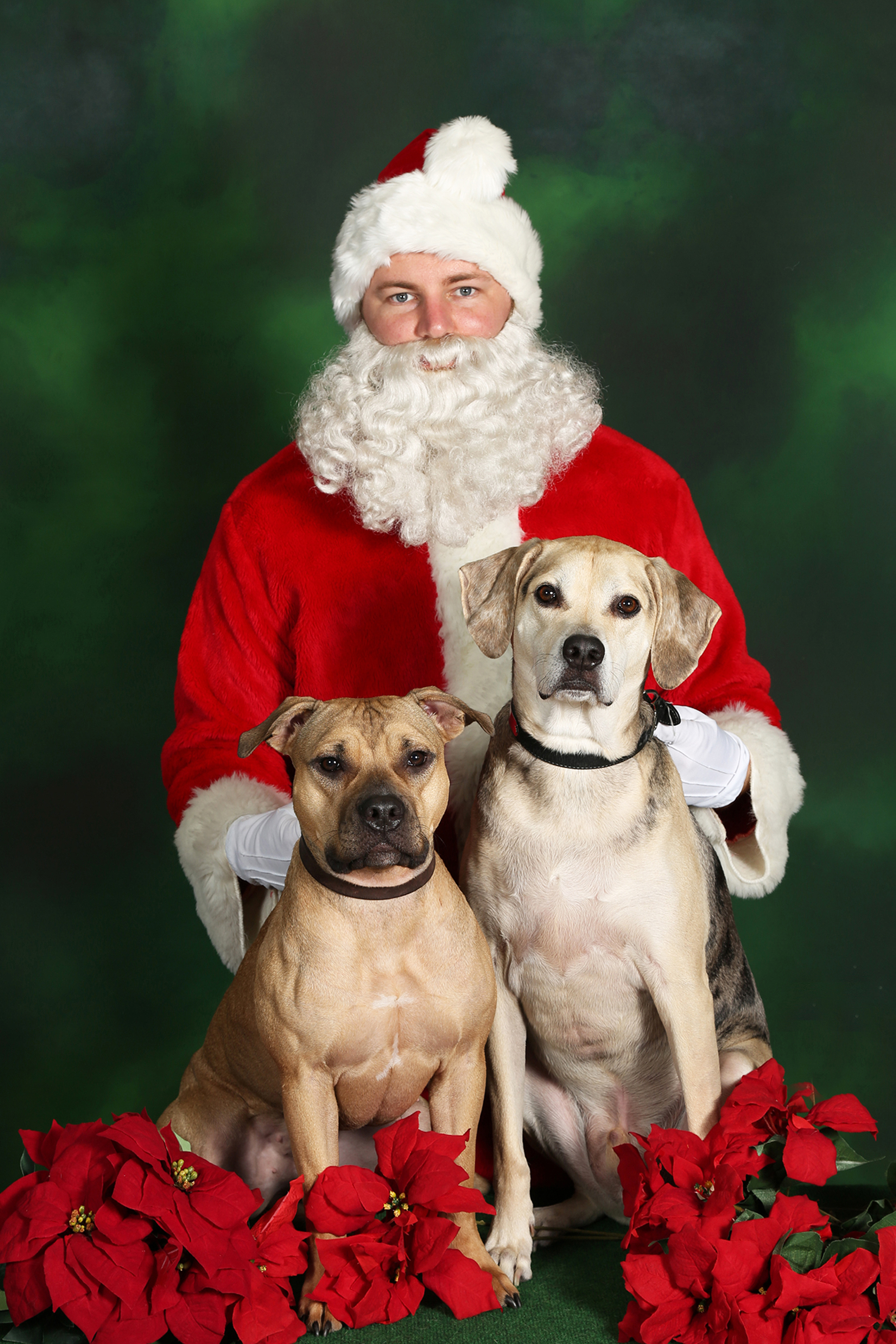 Athena and Zeus visit Santa Claus 2016